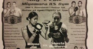 MMA Summer Showdown Fight Poster