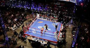 Boxing Photo