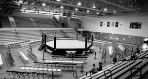 MMA Summer Showdown