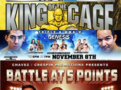 ABQ November Fights