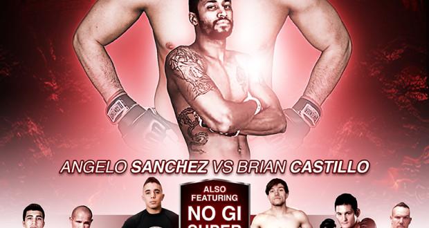 Triple A MMA X: Destiny